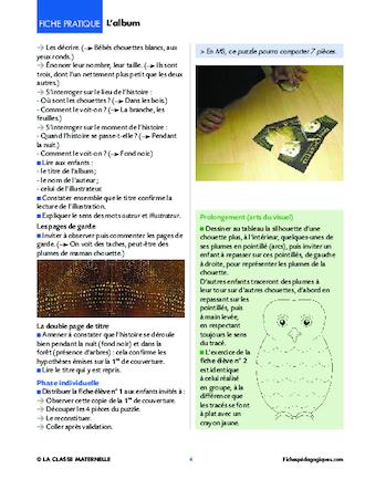Favorit Bébés chouettes, album pour PS MS - FichesPédagogiques.com MX53