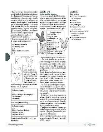Cajolicomptines (19) / Le lapin
