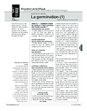 Jardiner (2) / La germination (1)