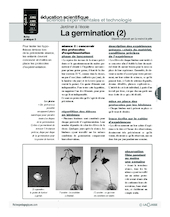 Jardiner (3) / La germination (2)