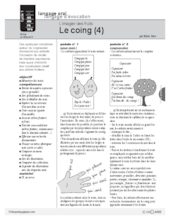 Le coing (4)