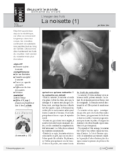 L'imagier des fruits : La noisette (1)