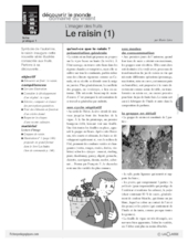 L'imagier des fruits : Le raisin (1)