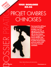 Projet ombres chinoises